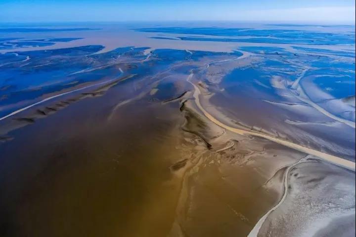 旅游:世界自然遗产——东台黄海湿地十大景点